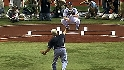 Rays raise the AL pennant