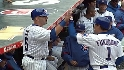 Fukudome&#039;s sac fly