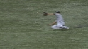 Wells&#039; sliding grab