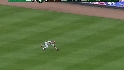 Werth's diving catch