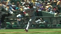 Guzman&#039;s sac fly