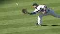Gibbons' sliding catch