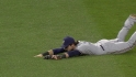 Braun&#039;s diving grab
