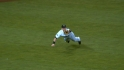 Carp&#039;s diving catch