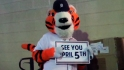 Tigers prep for Spring Training