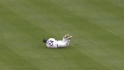 Byrd&#039;s nice snag