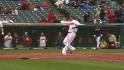 Hafner's sac fly