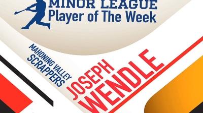 Wendle's triple leads Saguaros over Solar Sox