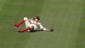 Pence's sliding catch