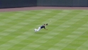 CarGo&#039;s diving catch