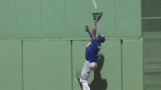 Dyson leaps the wall for the catch