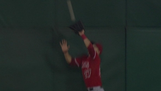 Trout with a leaping grab
