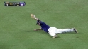 Hill&#039;s diving grab