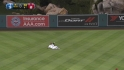 Wells' sliding catch