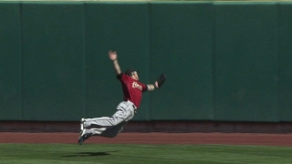 Barnes' spectacular catch