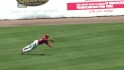 Brown&#039;s diving catch
