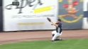 Gardner&#039;s sliding catch
