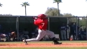 Top Prospects: Jose Rondon, SS, Angels