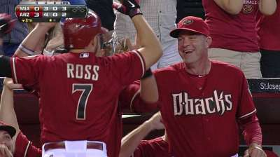 D-backs hunden a Marlins con vuelacercas de Ross