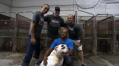 Yankees make animal shelter trip for HOPE Week