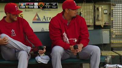 'Birdman' De La Rosa swoops in to help pigeon
