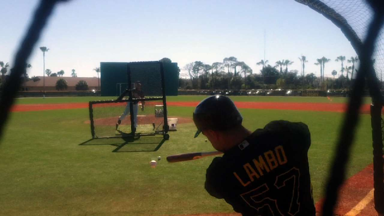 Constructive critique helping Lambo thrive at first