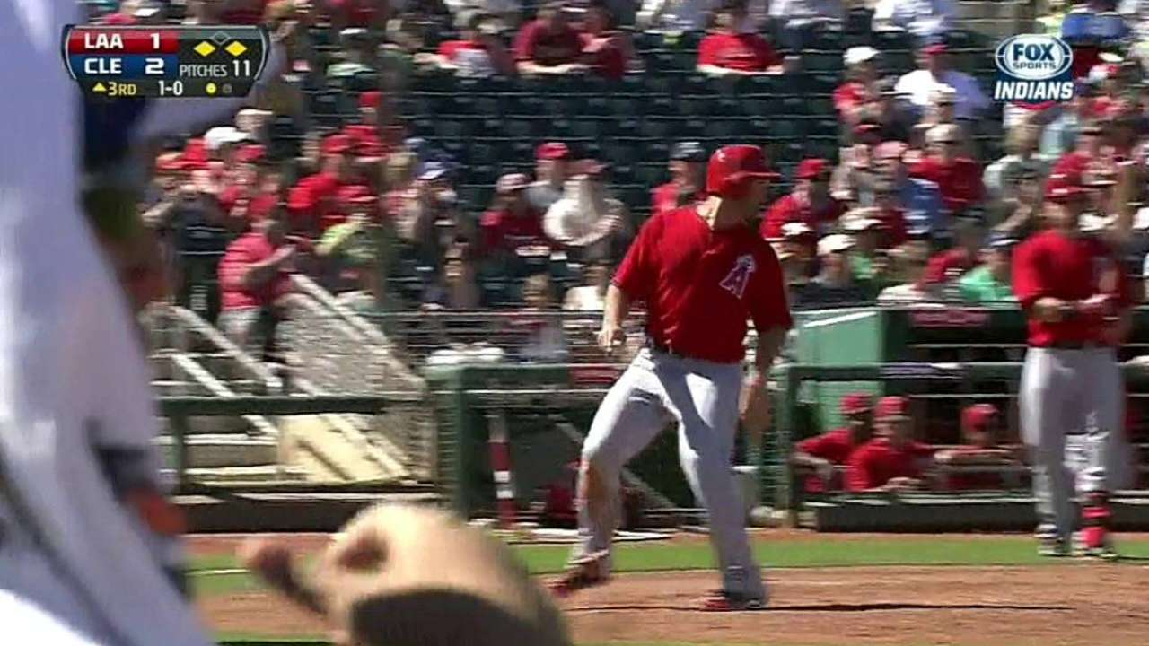 Cron has positive outlook after big spring