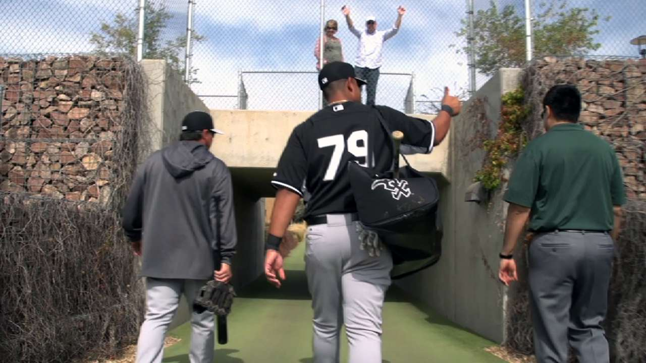 Baseball, family go hand in hand for Abreu