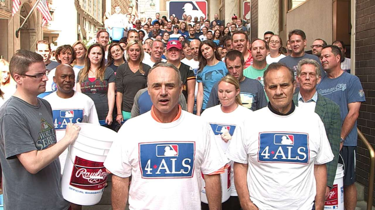 Manfred, MLB eagerly accept Ice Bucket Challenge