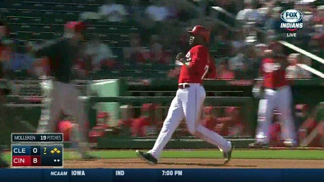 Winker's sac fly