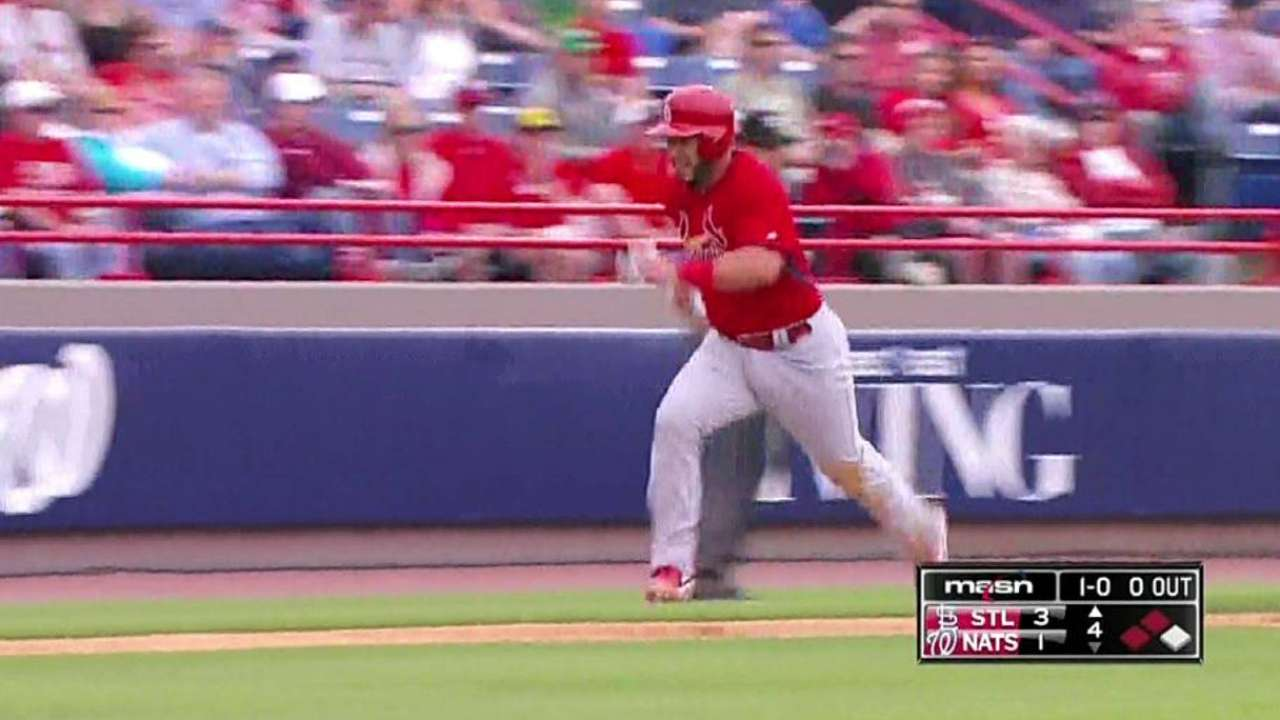 Kozma's sac fly