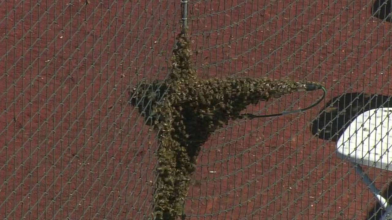 Swarm weather delays Royals-Angels in Tempe