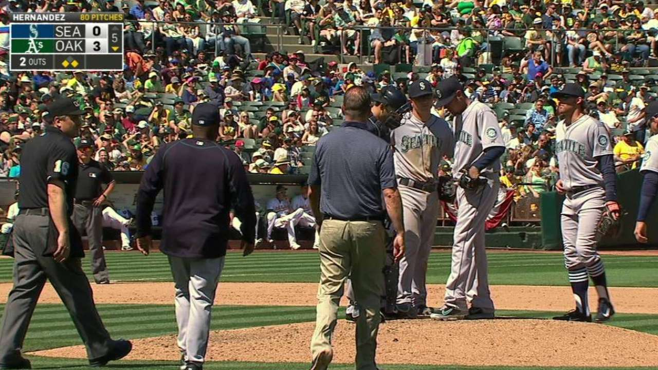 Felix examined by trainer
