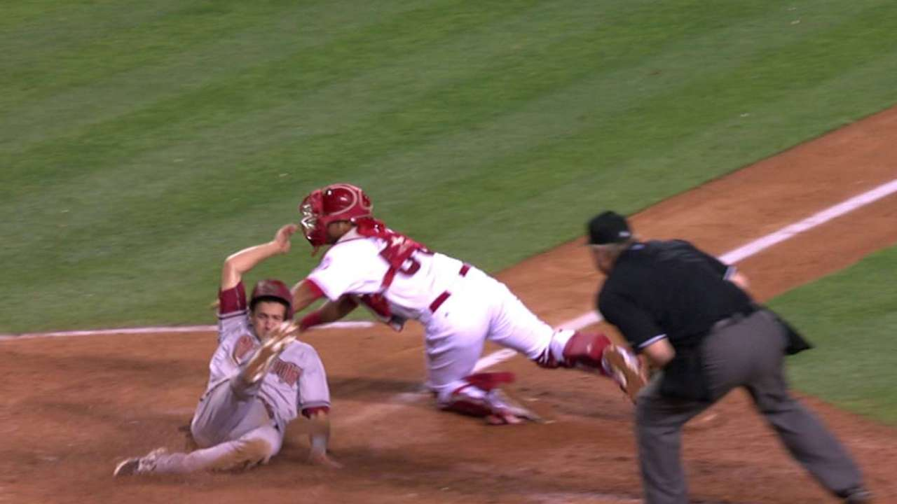 Pollock's sac fly stands