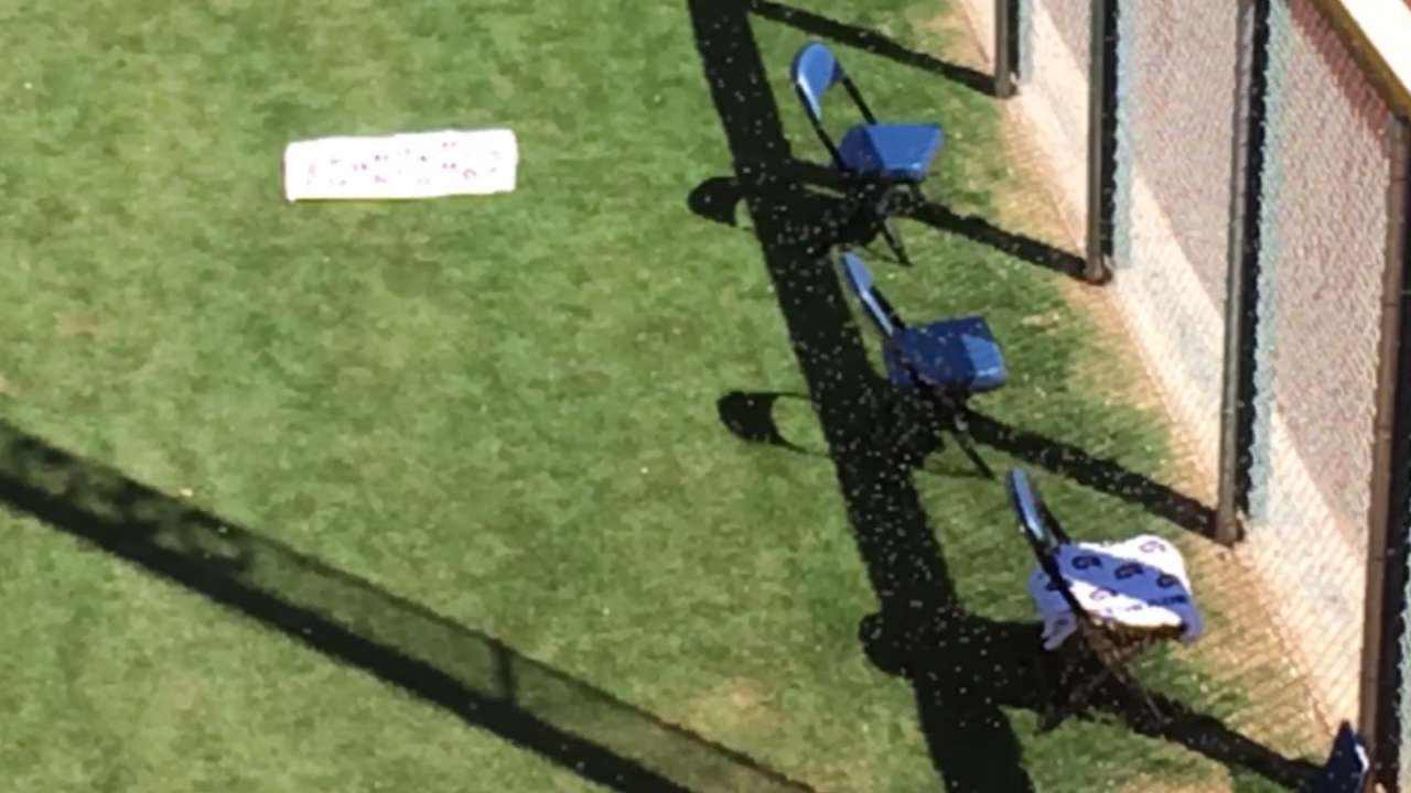Bees prompt delay in Mariners-Cubs game