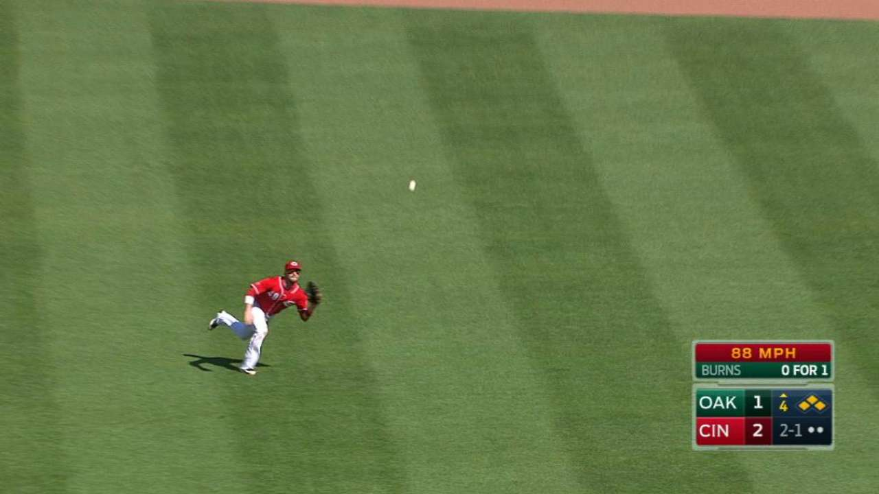 Holt's diving catch