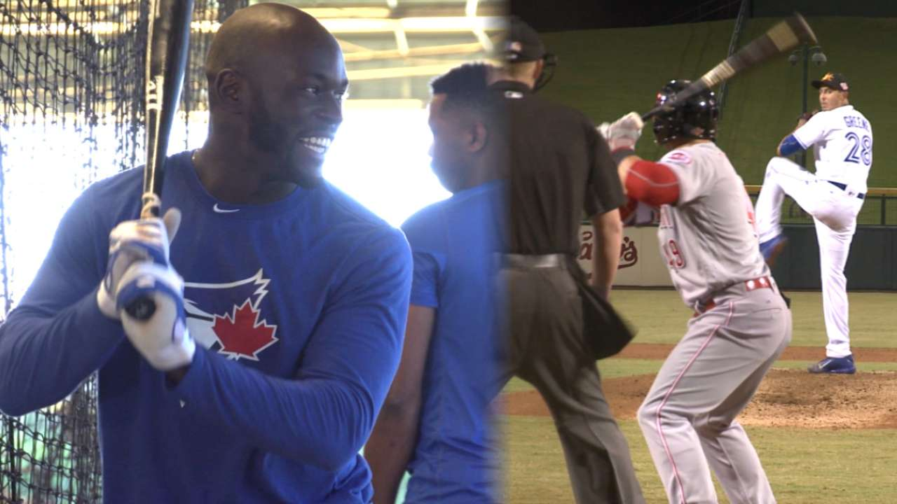 Blue Jays in AFL: Alford dazzling with loud tools