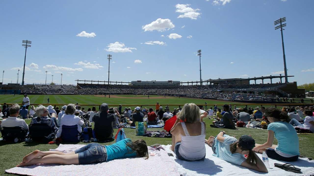 Ballpark tours offer experiences of a lifetime