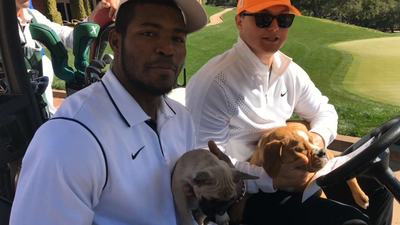 Pederson and Puig golf with dogs