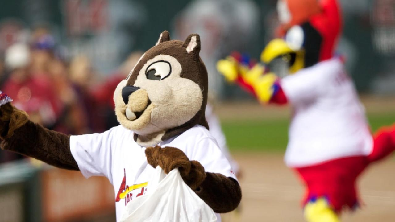 Rally Squirrel and other fun