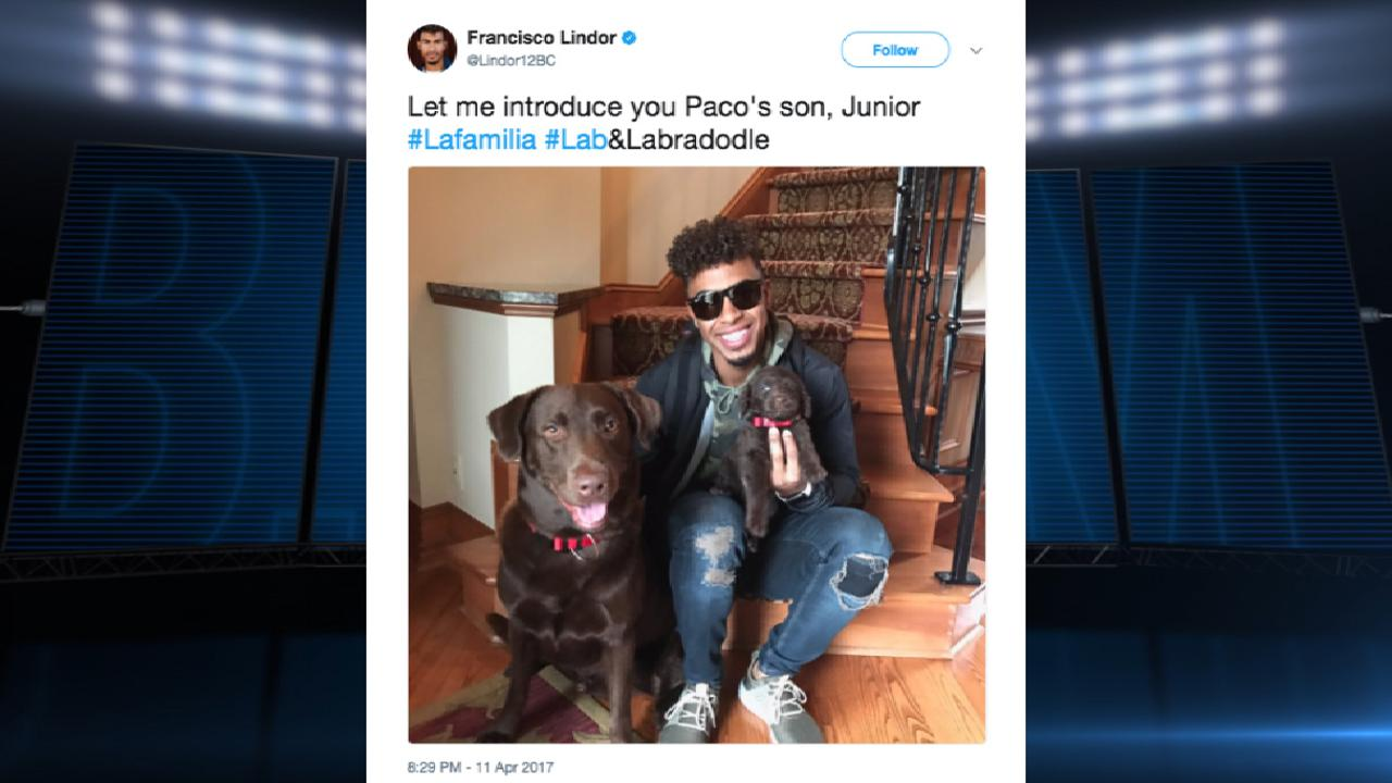 Personality of the Year: Lindor