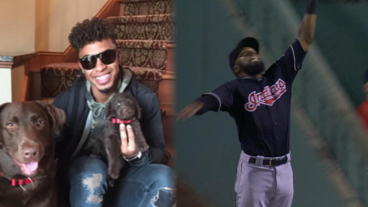 Indians are MLB #AwardWorthy