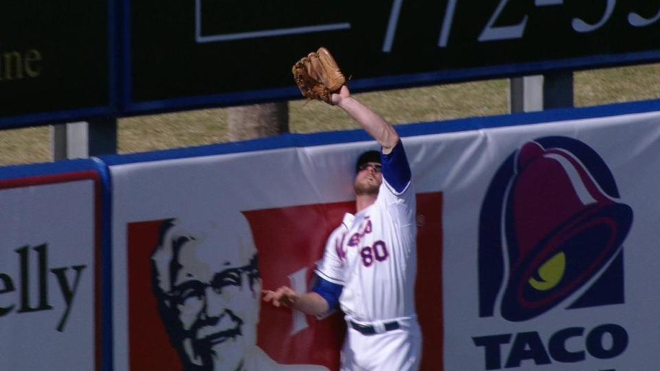 Hoffmann robs home run