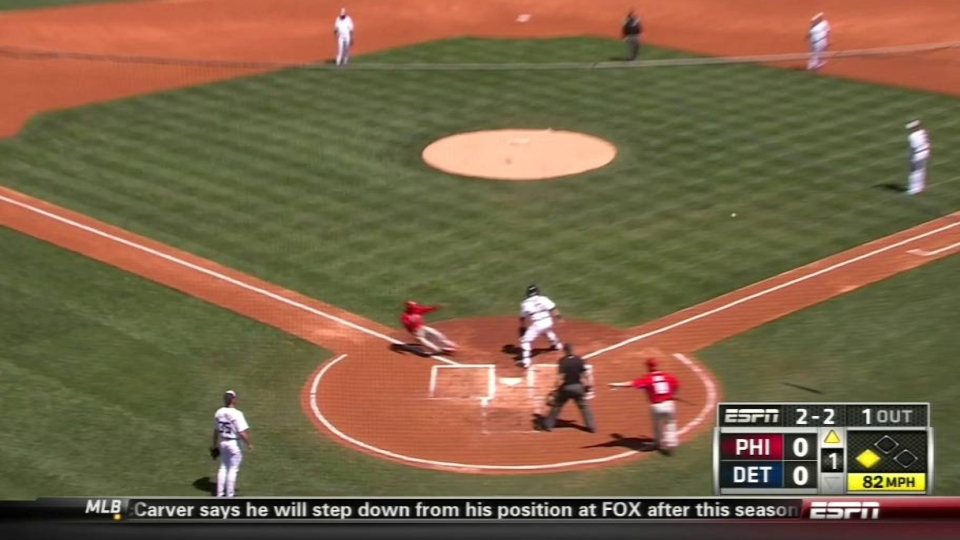 Young's sac fly