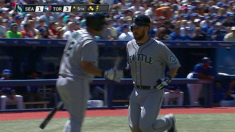 Seager's sac fly