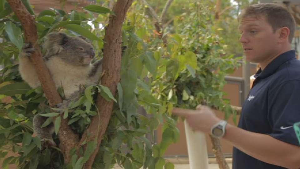 Ellis, Corbin at Taronga Zoo