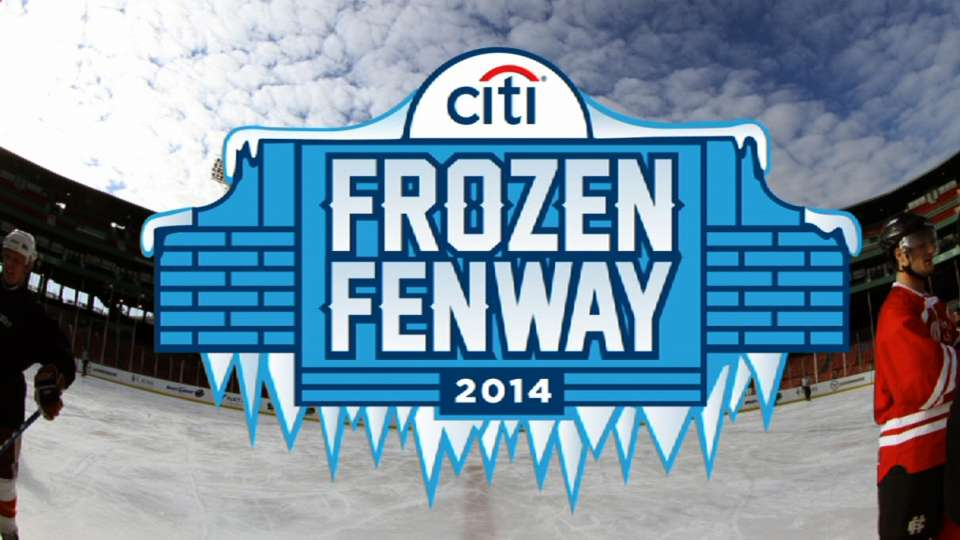 Citi Frozen Fenway for families