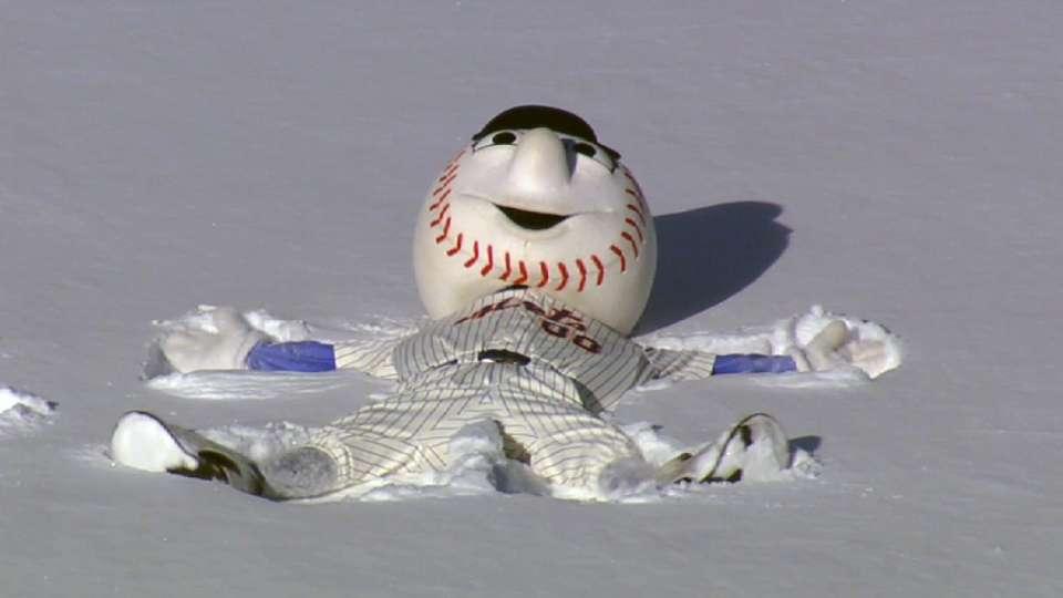 Mr. Met's snow day