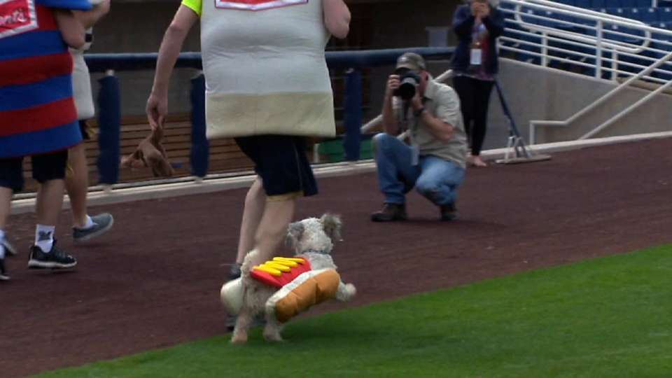 Hank competes in Sausage race