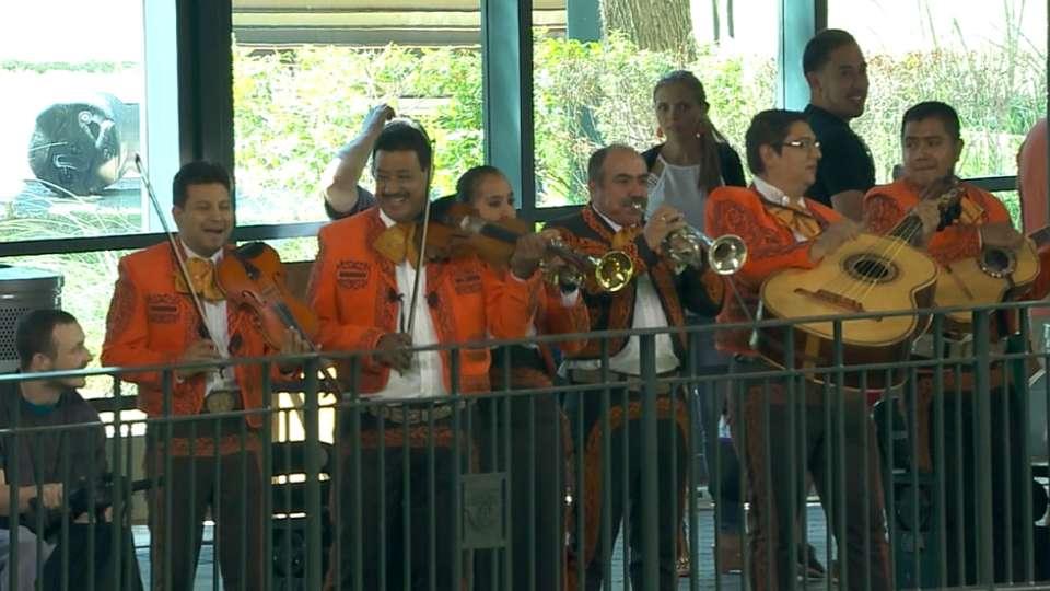 Mariachi band performs